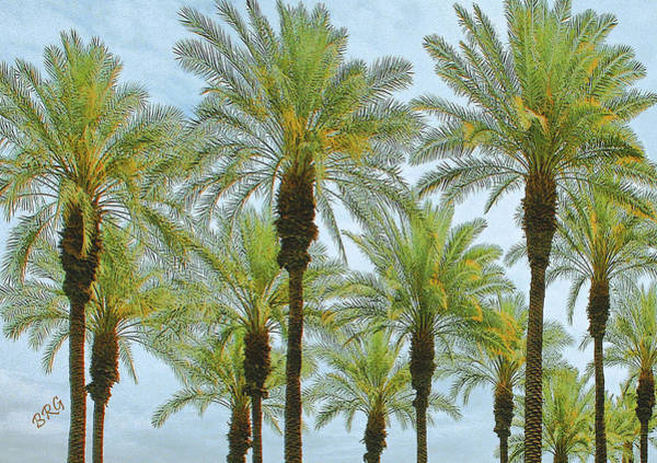 Photograph - Palms by Ben and Raisa Gertsberg