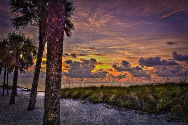 Sand Dunes Photograph - Palms Down To The Beach by Marvin Spates