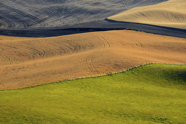 Wall Art - Photograph - Palouse Abstract by Latah Trail Foundation