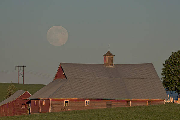 Wall Art - Photograph - Palouse Solstice Moon by Latah Trail Foundation