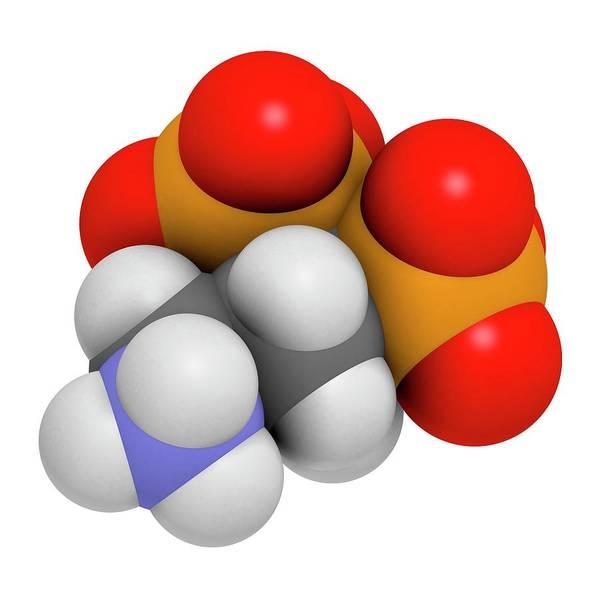 3d Model Photograph - Pamidronic Acid Osteoporosis Drug by Molekuul