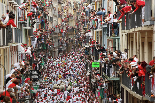 Topix Photograph - Pamplona Running Of The Bulls by Pablo Blazquez Dominguez