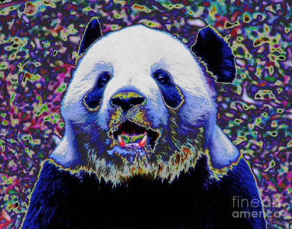 Photograph - Panda Bear Smile by Larry Oskin