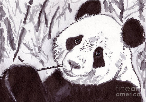 Black Wall Art - Painting - Panda by Michael Rados