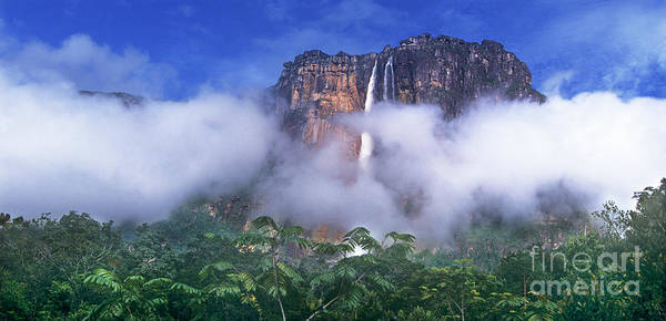 Photograph - Panorama Angel Falls Canaima National Park Veneziuela by Dave Welling