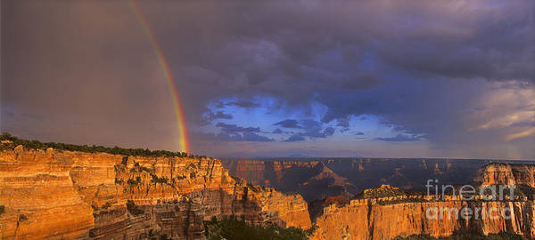 Photograph - Panorama Rainbow Over Cape Royal North Rim Grand Canyon National Park by Dave Welling