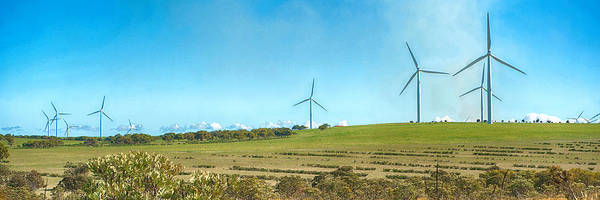 Photograph - Panoramic Photo Of Wind Turbines At Emu Downs Wind Farm by Yew Kwang