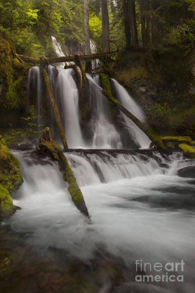 Wall Art - Photograph - Panther Creek Falls Washington by Keith Kapple