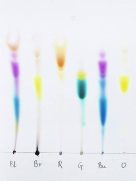 Ink Pen Photograph - Paper Chromatography by Andrew Lambert Photography