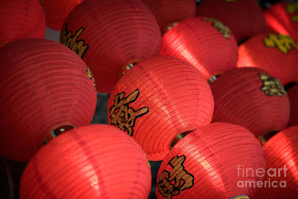 Chinese Lantern Wall Art - Photograph - Paper Lanterns by Rod McLean