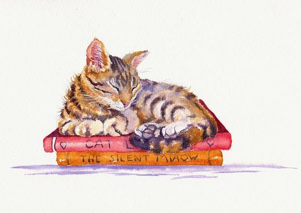 Domestic Cat Wall Art - Painting - Paperweight by Debra Hall