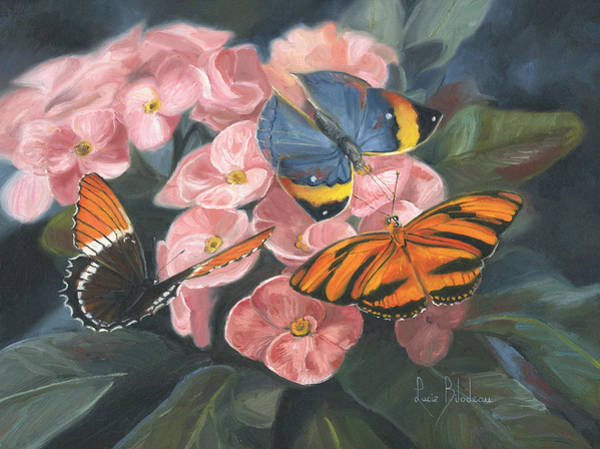 Tropical Flower Painting - Papillons by Lucie Bilodeau