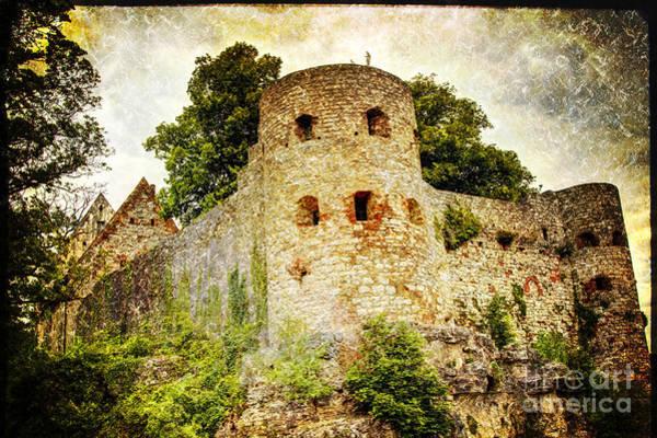 Photograph - Pappenheim Castle by Heiko Koehrer-Wagner