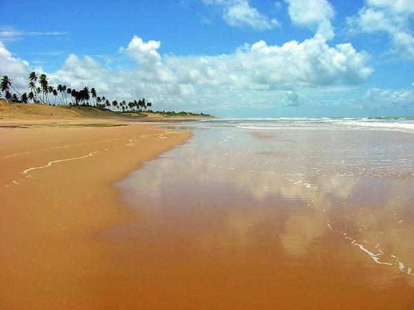 Bahia Photograph - Paradise - Paraíso by Adrian R Walmsley