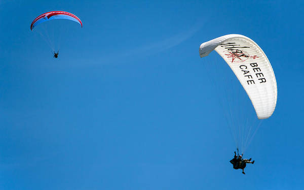 Photograph - Paragliders by Nicholas Blackwell