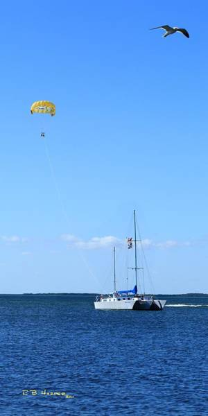 Photograph - Parasailing by R B Harper