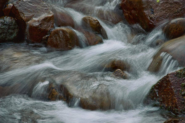 Photograph - Parfrey's Glen Creek by Theo O Connor