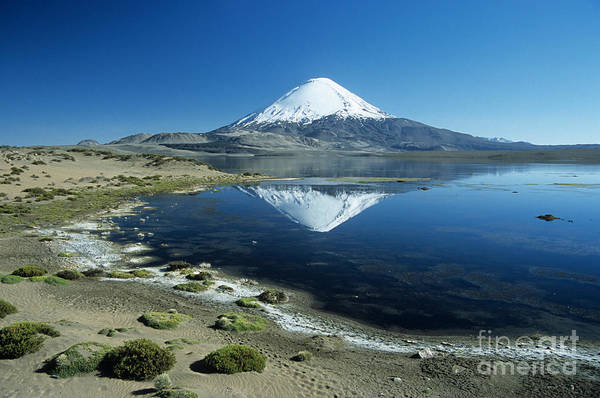 Photograph - Parinacota Volcano Chile by James Brunker