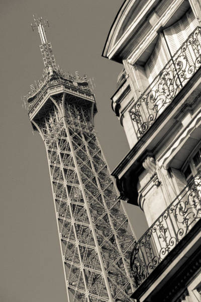 Photograph - Paris Eiffel by Matthew Pace