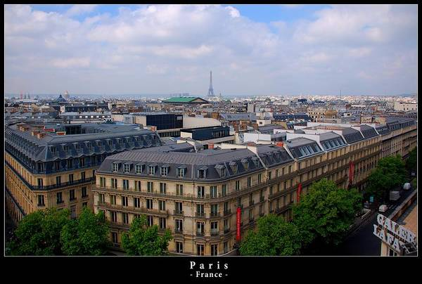 Galeries Lafayette Photograph - Paris From Above by Dany Lison