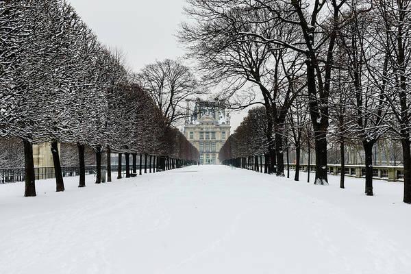 Jardin Des Tuileries Photograph - Paris In White - Tuileries Garden by Berthold Trenkel