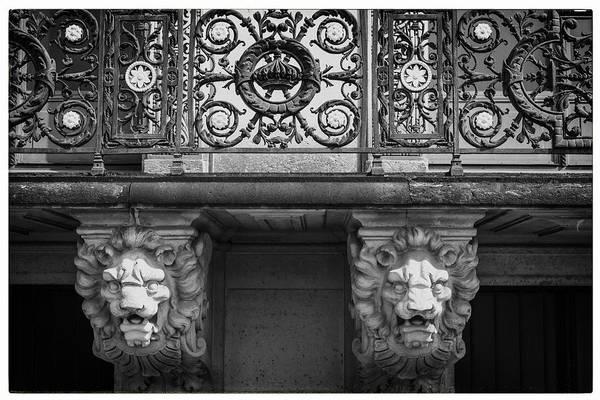 Photograph - Paris Lions by Georgia Fowler
