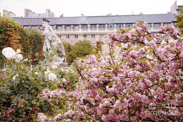 Palais Photograph - Paris Palais Royal Rose Sculpture Garden - Paris Spring Cherry Blossoms At Palais Royal Garden by Kathy Fornal