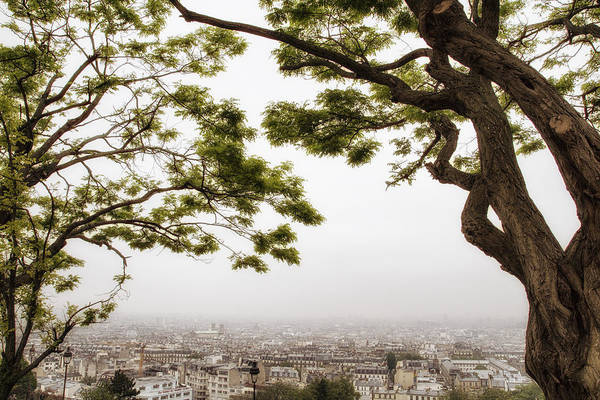 Comtemporary Photograph - Paris Through The Springtime Trees by Georgia Fowler