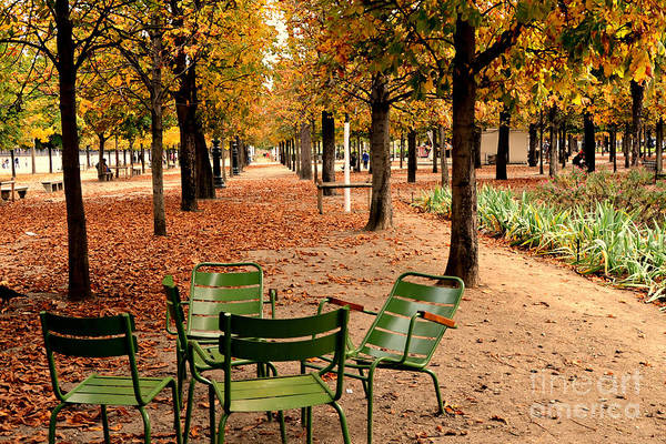 Jardin Photograph - Paris Tuileries Gardens And Trees - Jardin Des Tuileries Gardens Parks Autumn - Paris Fall Autumn by Kathy Fornal