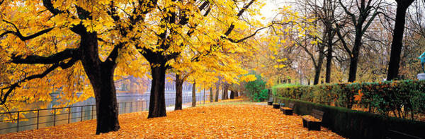 Dreary Photograph - Park Bavaria Munich Germany by Panoramic Images