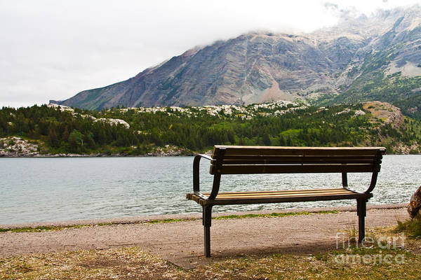 Photograph - Park Bench At The Lake by Rachel Duchesne