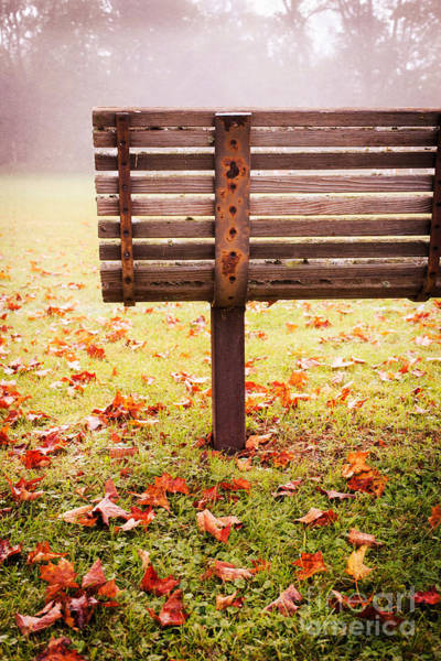Photograph - Park Bench In Autumn by Edward Fielding