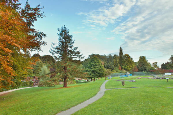 Park In Autumn Art Print