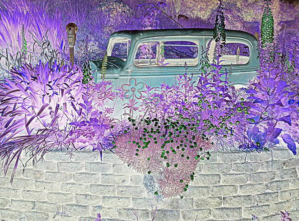 Photograph - Parking Fines by Suzy Piatt
