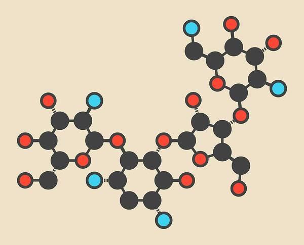 Amoebiasis Wall Art - Photograph - Paromomycin Aminoglycoside Molecule by Molekuul