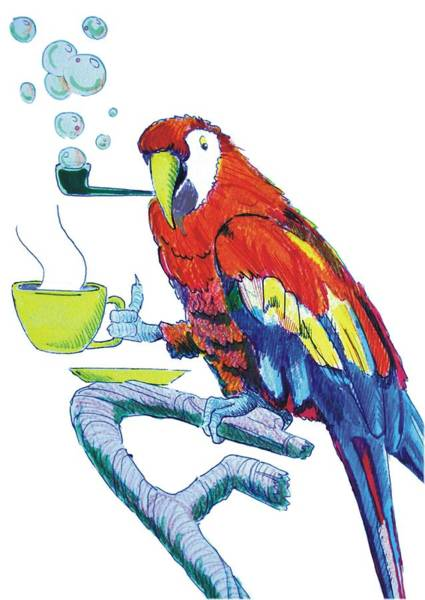 Drawing - Parrot Cartoon by Mike Jory