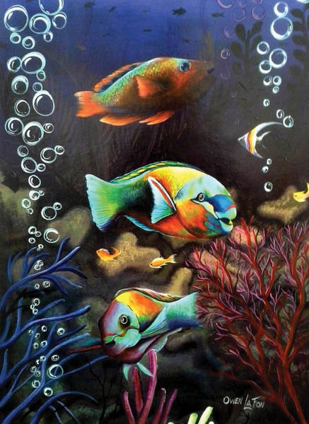Painting - Parrot Fish by Owen Lafon