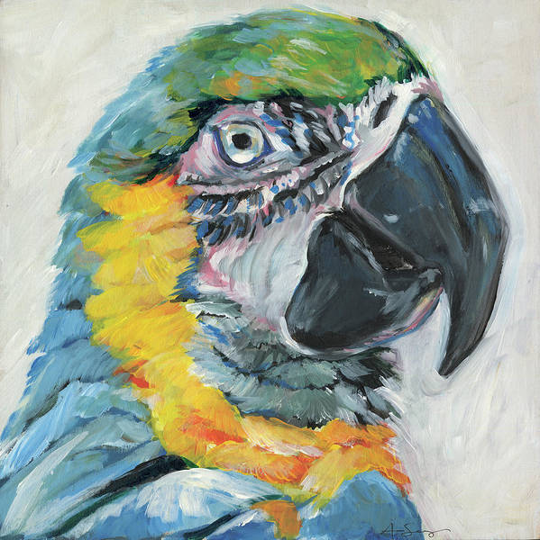 Wall Art - Painting - Parrot II by Anne Seay