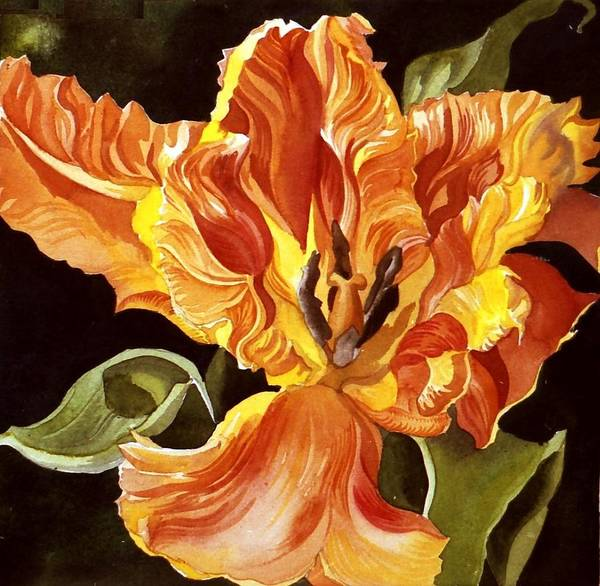 Painting - Parrot Tulip by Alfred Ng