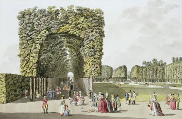 Park Avenue Wall Art - Painting - Part Of The Garden At Ausgarten by Johann Ziegler