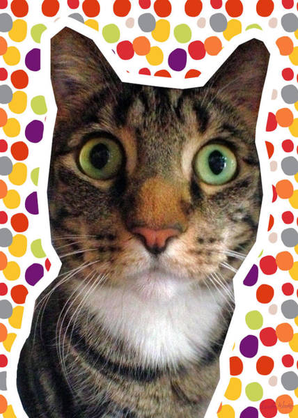 Wall Art - Photograph - Party Animal- Cat With Confetti by Linda Woods