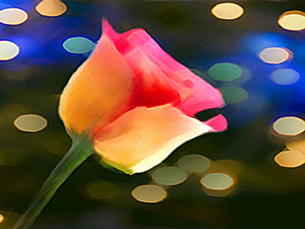 Mixed Media - Party Rose by Dennis Buckman