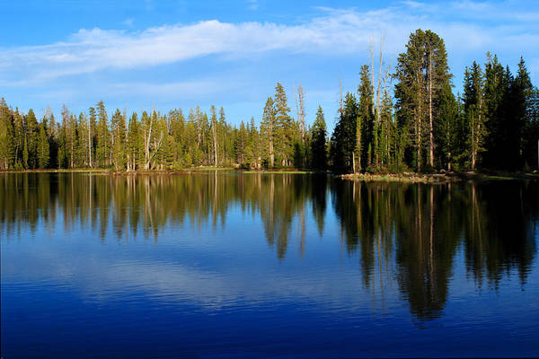 Photograph - Pass Lake Reflections by TL  Mair