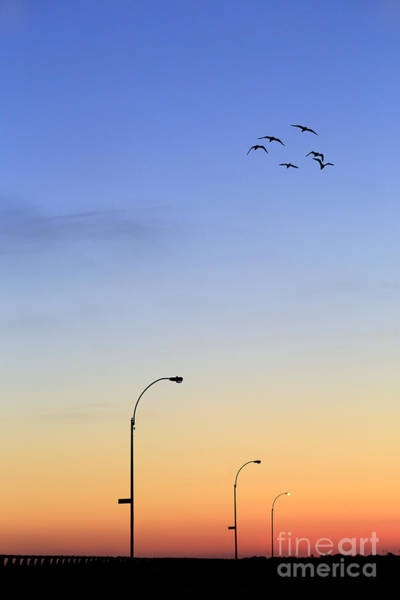 Skies Photograph - Passage Into Dawn by Evelina Kremsdorf