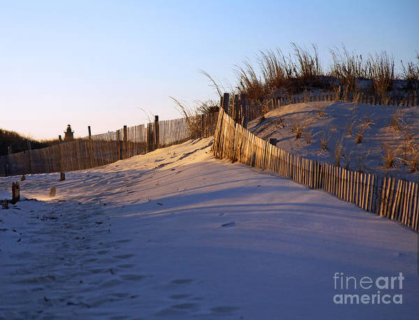 Lewes Photograph - Passing By The Dunes by Robert Pilkington
