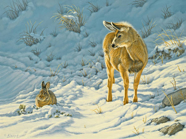 Fawn Painting - Passing Curiosity by Paul Krapf