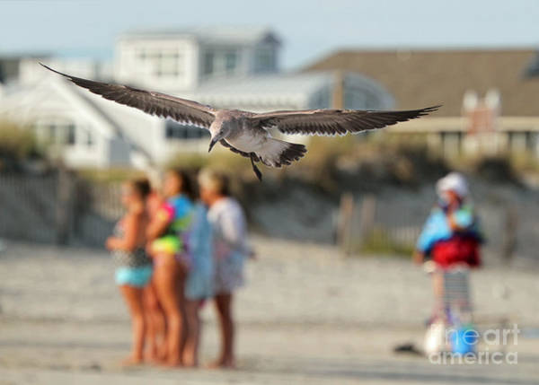 Photograph - Look Out Below by Geoff Crego
