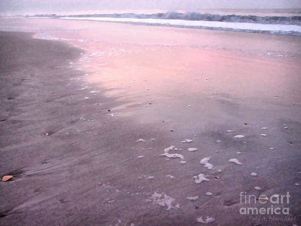 Photograph - Pastel Beach by Todd Blanchard