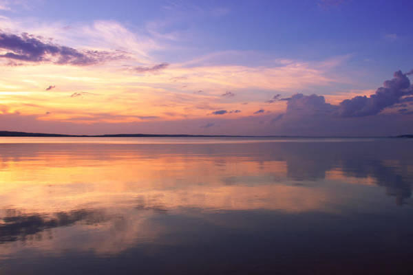 Photograph - Pastel Majesty by Rachel Cohen