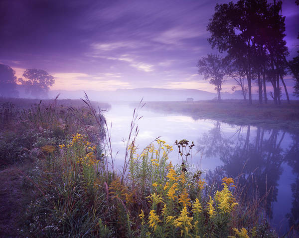 Photograph - Pastel Morning by Ray Mathis